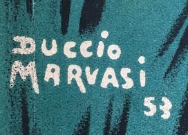 Duccio Marvasi